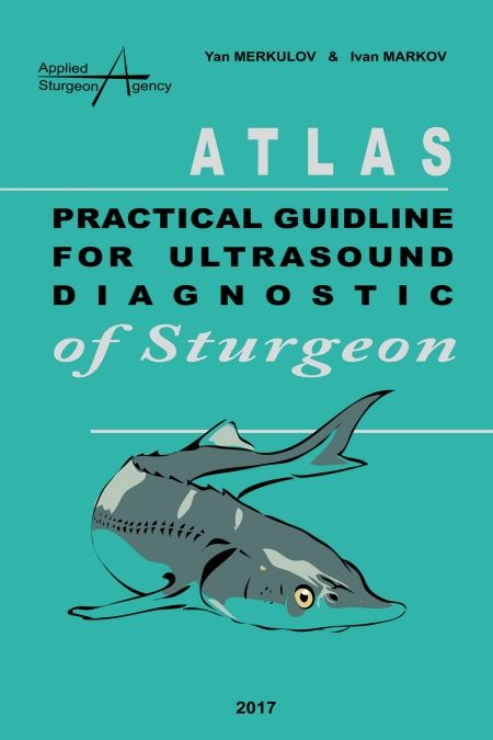 Practical guideline for ultrasound diagnostic of sturgeon  - обложка